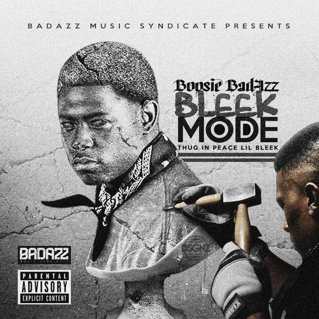 Album cover for Bleek Mode (Thug In Peace Lil Bleek) by Boosie Badazz
