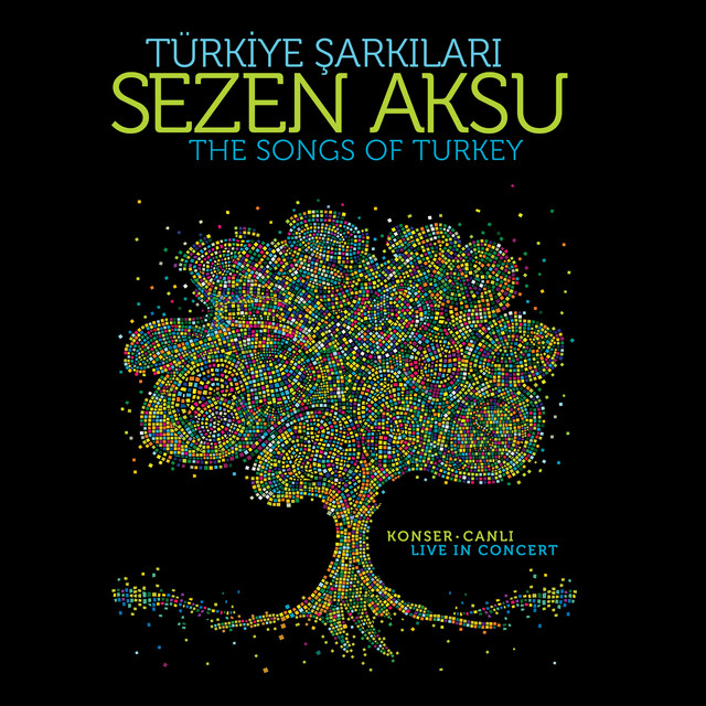 Türkiye Şarkıları (Canlı)