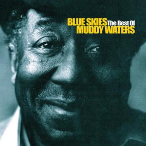 Blue Skies - The Best Of Muddy Waters Albümü