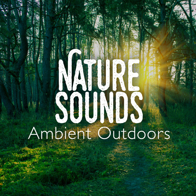 Nature Sounds: Ambient Outdoors Albumcover