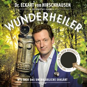 Wunderheiler Audiobook