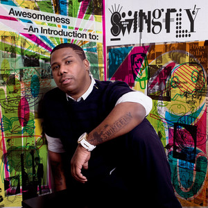 Awesomeness - An Introduction to Swingfly album