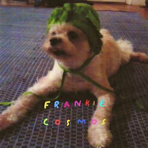 Zentropy - Frankie Cosmos