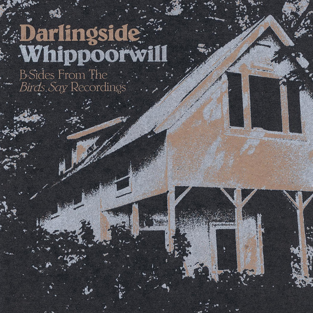 Album cover for Whippoorwill by Darlingside