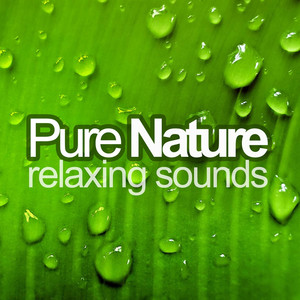 Relaxing Music and Nature Sounds (Floating Melodies, Soothing Harmonies and the Gentle Rhythms of Nature to Create a Peaceful State of Mind) Albumcover