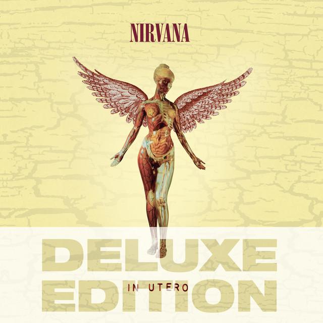 Heart Shaped Box (93) album cover