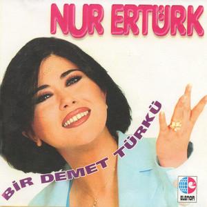 Bir Demet Türkü Albumcover