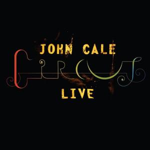 Circus Live album