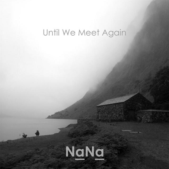 Na Na Until We Meet Again album cover
