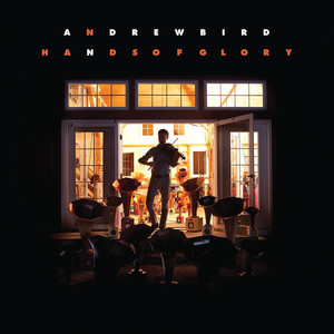 Hands of Glory - Andrew Bird