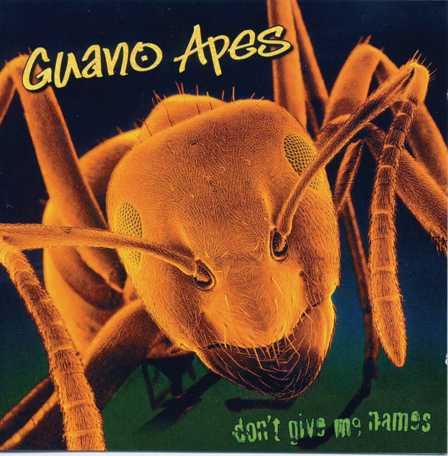 Guano Apes Don' t Give Me Names album cover