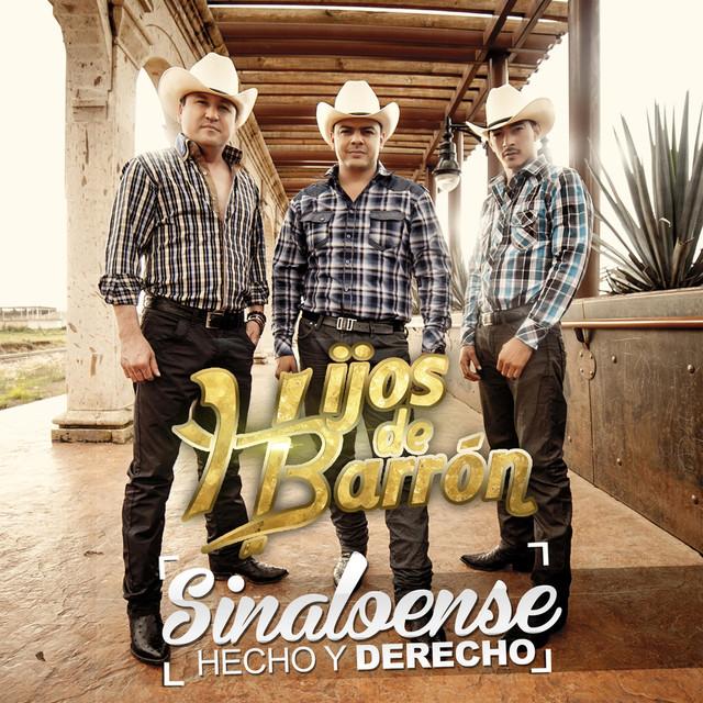 Album cover for Sinaloense Hecho Y Derecho by Hijos De Barron