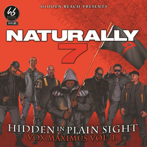 Hidden in Plain Sight album