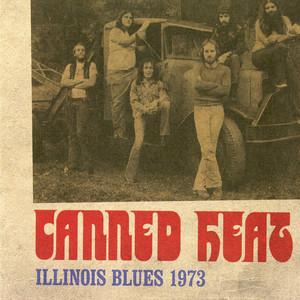 Illinois Blues 1973 (Live)