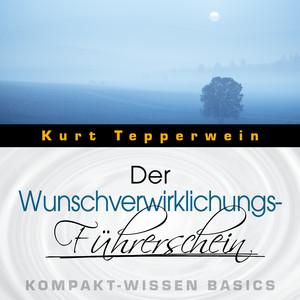 Der Wunschverwirklichungs-Führerschein - Kompakt-Wissen Basics Audiobook