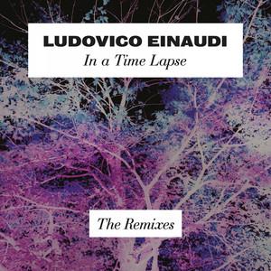 In a Time Lapse (The Remixes) Albümü