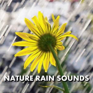 Nature Rain Sounds Albumcover