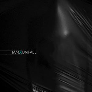 Unfall album