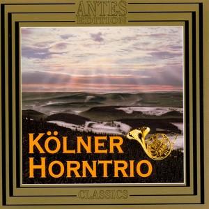 Brahms Horntrio, Johannes Brahms: Trio fuer Piano, Violine und Horn op. 40 - Andante, Poco piu animato på Spotify