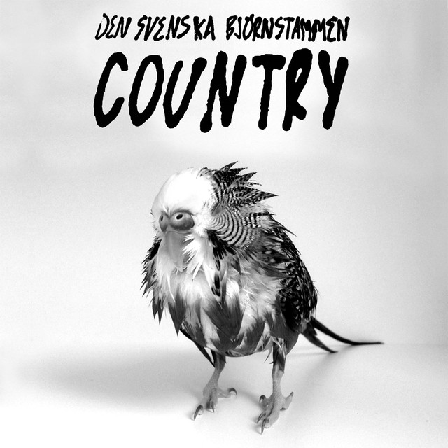 Country (Instrumental)