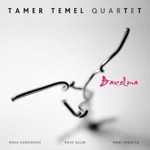 Tamer Temel Quartet