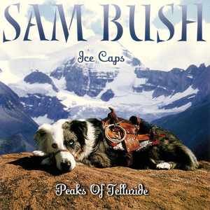Sam Bush Angel to Be cover