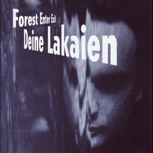 Forest Enter Exit + Mindmachine album