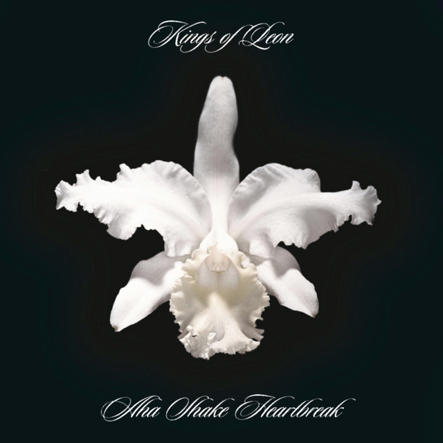 Album cover for Aha Shake Heartbreak by Kings of Leon