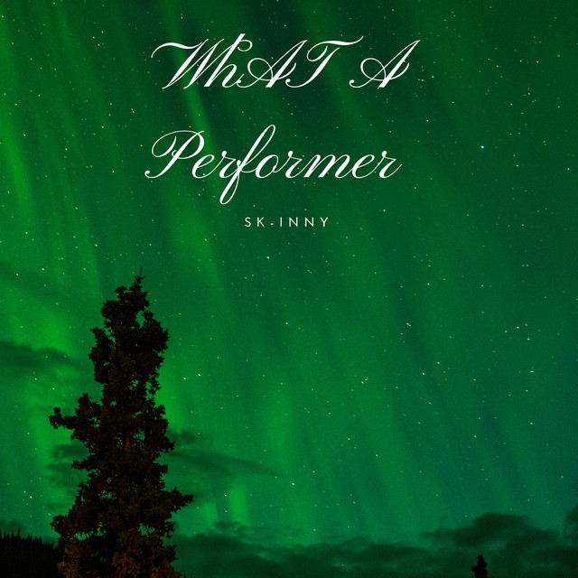 Album cover for What A Performer by SK-inny