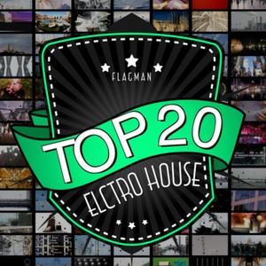 Flagman Top 20 Electro House Albumcover