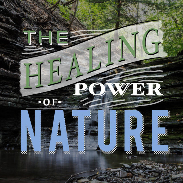 The Healing Power of Nature Albumcover
