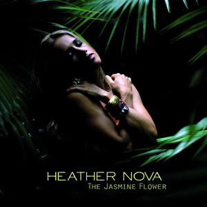 The Jasmine Flower album