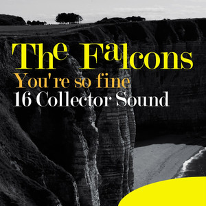 You're so Fine - 16 Collector Sound album