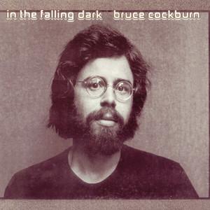 In the Falling Dark album