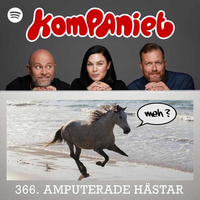 Amputerade hästar