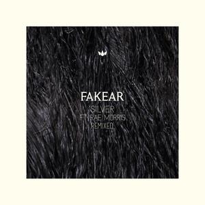 Silver (Remixed) Albümü