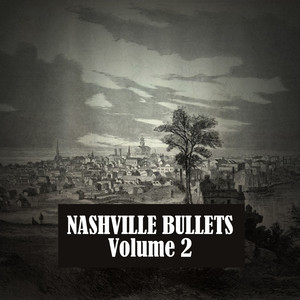 The Best of Nashville Bullets, Vol. 2
