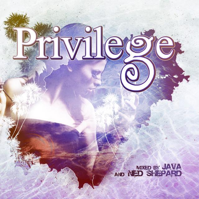 Privilege 2010