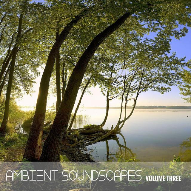 Ambient SoundScapes, Vol 3 - Michael Horsphol by Michael