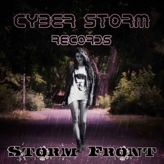 Storm Front Albumcover
