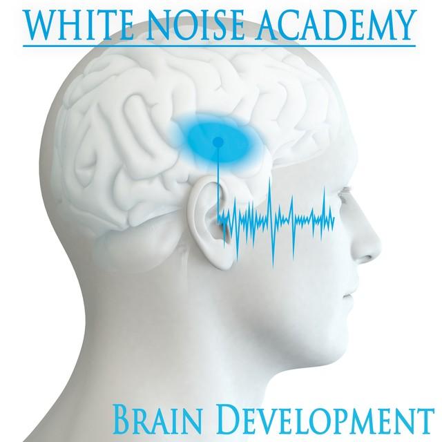 White Noise Academy (Brain Development) Albumcover