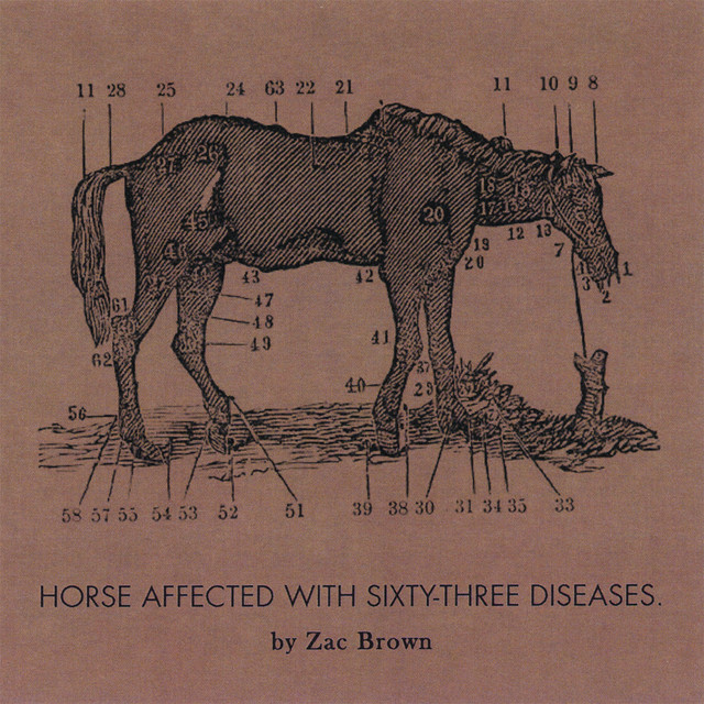Zac Brown Ride the Sick Horse album cover