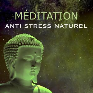 Méditation – Jardin Zen: Musique de la Nature comment Anti Stress Naturel pour Apprendre la Méditation Yoga Reiki et Vivre Mieux Albumcover