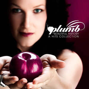 Beautiful History (A Hits Collection)  - Plumb