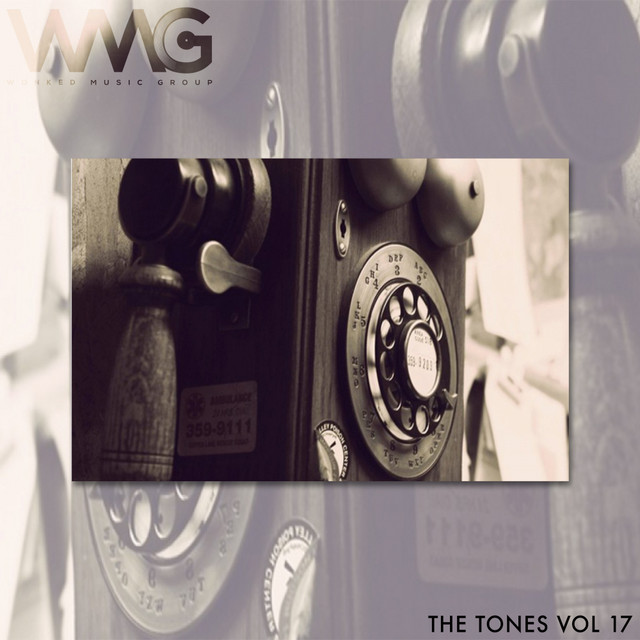 Album cover for The Tones, Vol. 17 by Various Artists