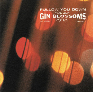 Follow You Down - Gin Blossoms