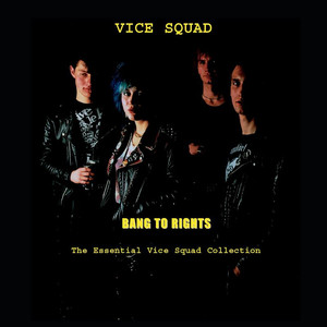 Bang To Rights: The Essential Vice Squad Collection album