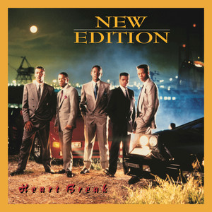 New Edition Can You Stand the Rain cover