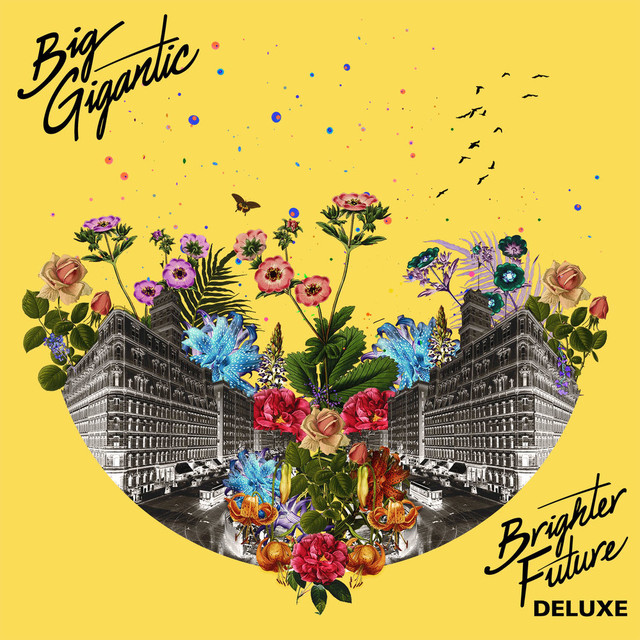 Album cover for Brighter Future (Deluxe Version) by Big Gigantic