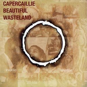Beautiful Wasteland album